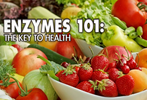 enzymes in food production Enzyme technology applications of proteases in the food industry certain proteases have been used in food processing for centuries and any record of the discovery of.